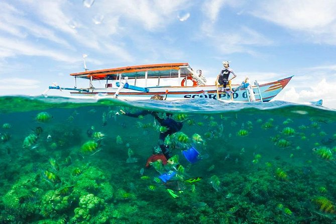 private tours and Snorkeling Gili nanggu photo 7