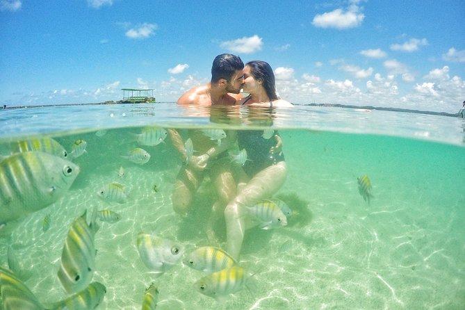Passeios privativos em Alagoas