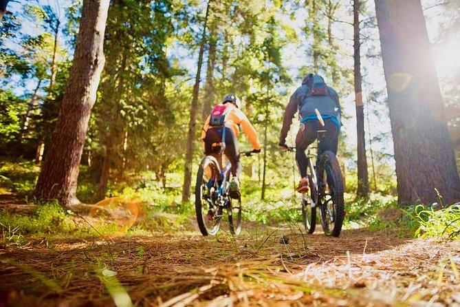 Mountain Biking in Jacques-Cartier National Park