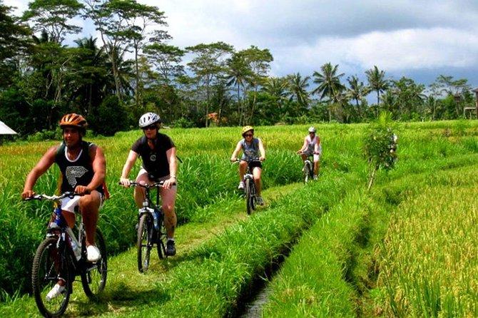 7D6N Bali Countryside Tour: Beaches, Trekking, Cycling & Cooking Class