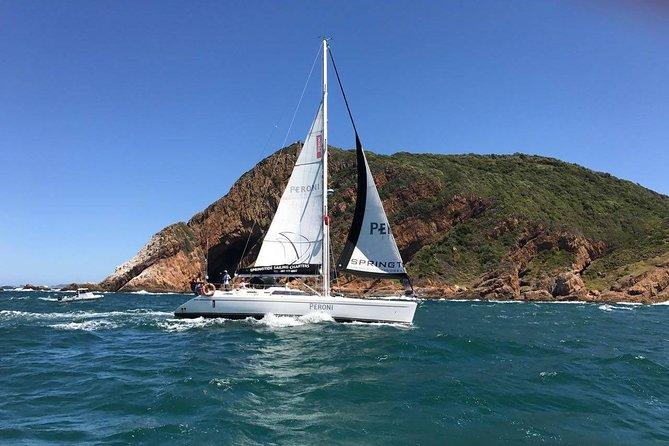 Knysna 1.5 hour Day Sailing Cruise