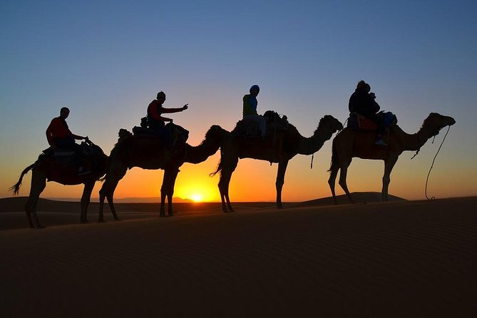 6 Days Private Tour to South Morocco Desert with Camel Trek