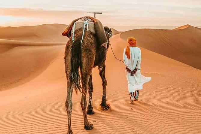 Around Morocco Tour : Best Highlights of Morocco for 7 Days 6 Nights