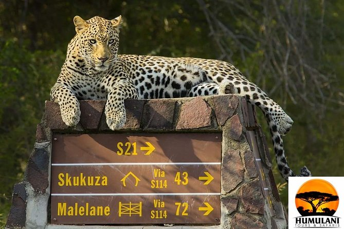 3 Nights 4 days Kruger via Panorama overnight package