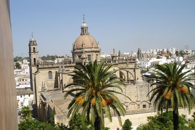 Excursion to Jerez from Seville: Visit to Wineries + wine tasting