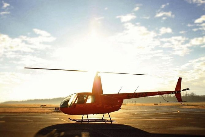 New Orleans City and Swamp Helicopter Tour
