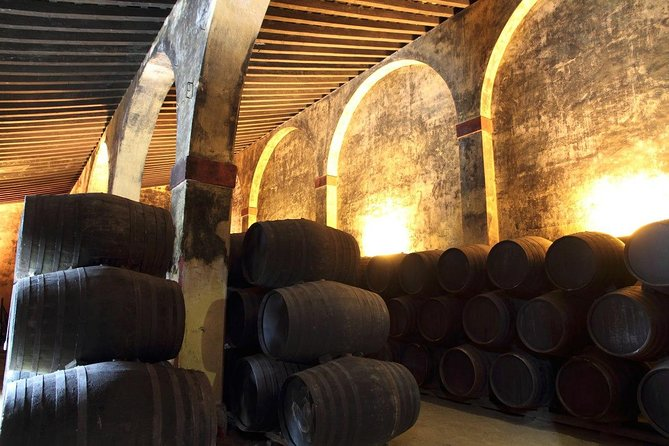 Discover Sherry in Jerez photo 9