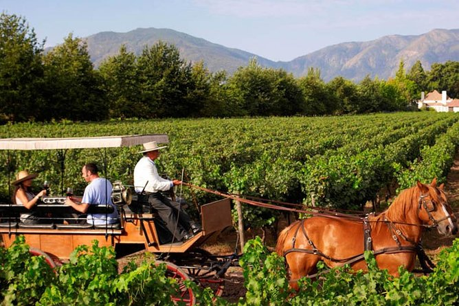 Full Day Tour Colchagua Valley - Wine Route, departure from Santiago