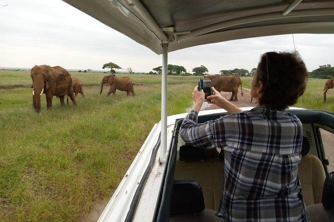16 Days Kenya simba safari.