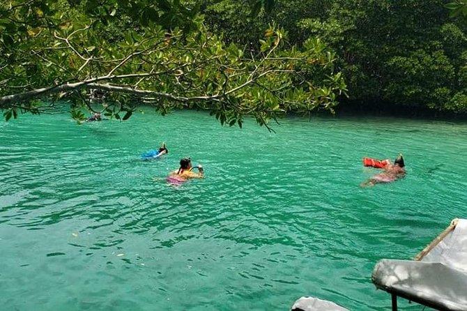 Garifuna Village plus Daniel Johnson Monkey and Sloth and Mangrove Tunnel Tour.