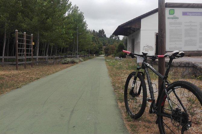 Full Day Cycling Ecopista do Dão 50 km