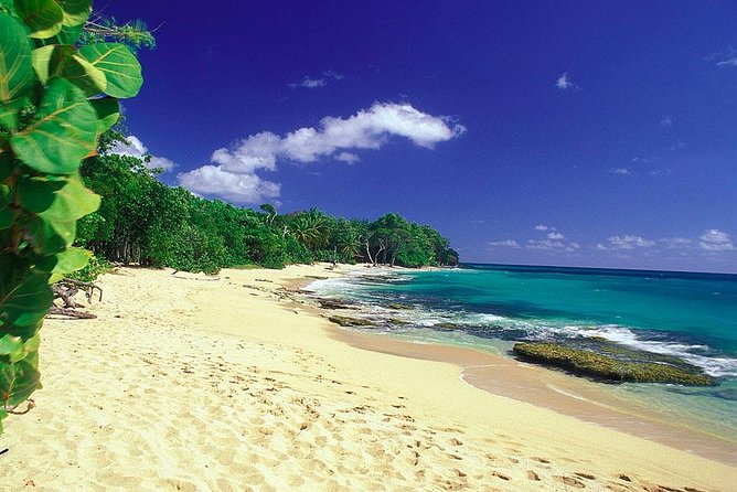South Caribbean Tour in Martinique