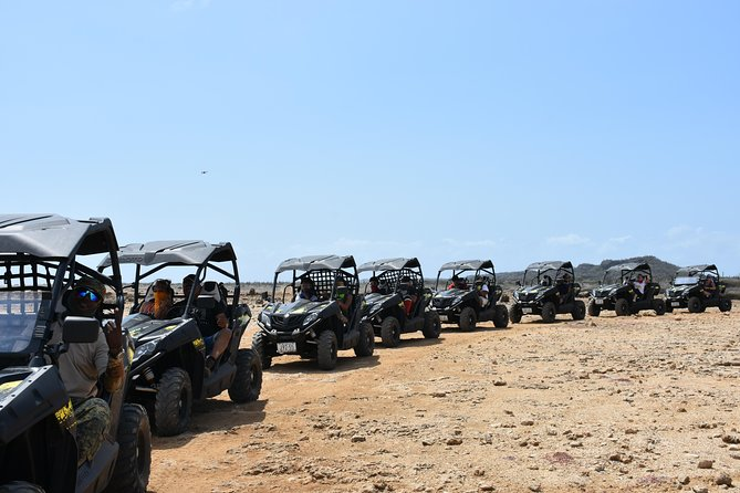 CURACAO SIGHTSEEING BUGGY TOURS EXCURSION