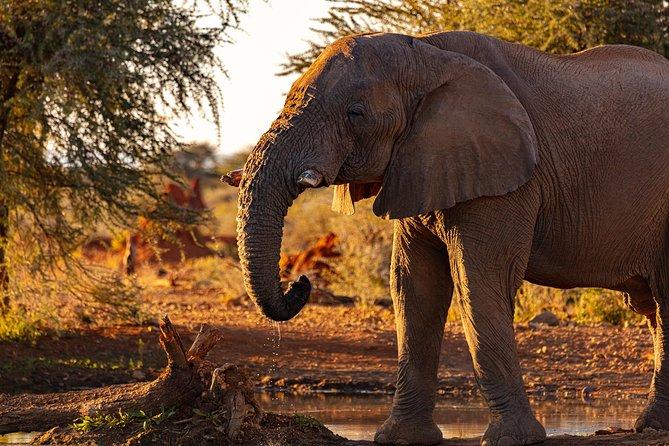 3 Days Masai Mara