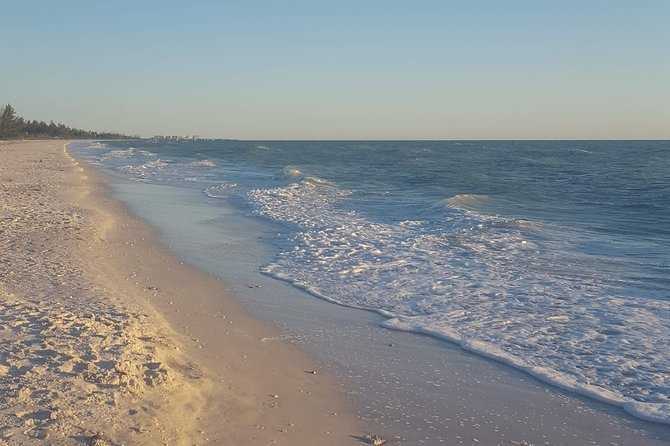 Private Eco Boat Trip out of Naples Bay, FL and the Gulf, island stop incl.