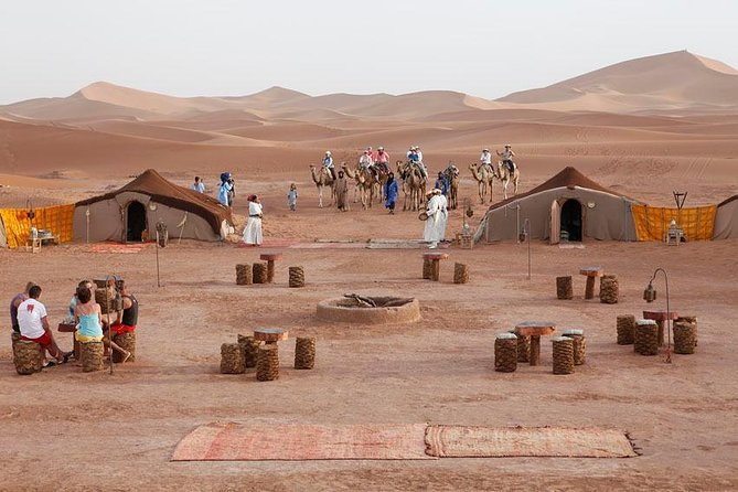 Exclusive Camel Tour from Marrakech to Sahara Desert: 2Day 1Night in Zagora camp