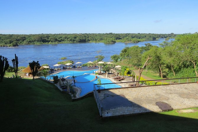 Luxury Uganda Wildlife and Gorilla Trekking Family Holiday 14 Day Safari