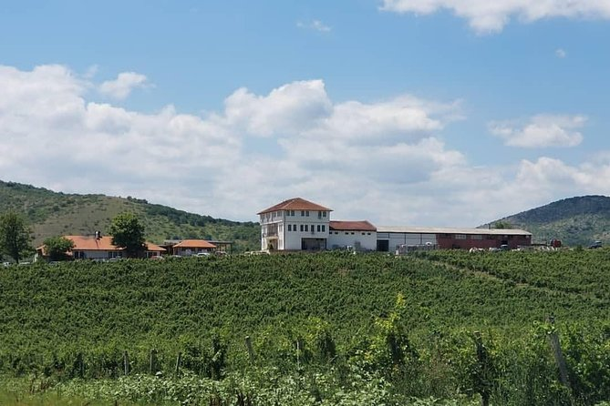Private Wine Tour of Chateau Sopot Winery from Skopje