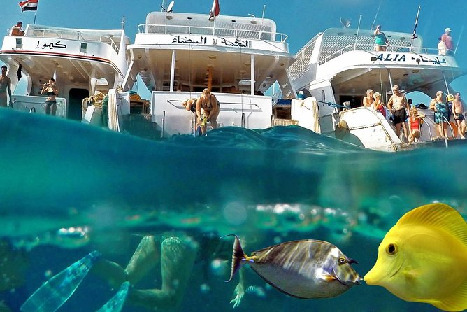 Giftun Island VIP with water sport & Snorkeling Sea Trip - Hurghada photo 46