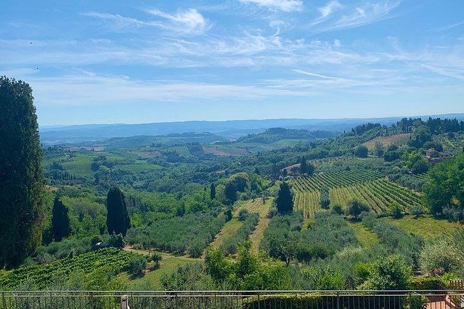 Private - Taste of Chianti - Excursion from Florence