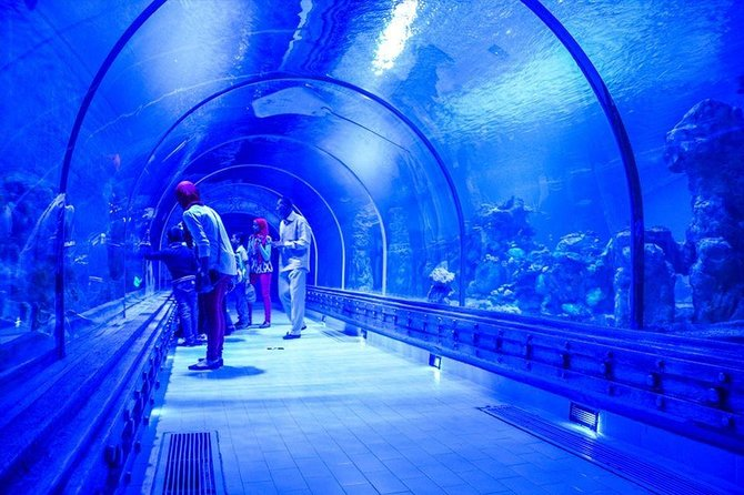 Grand Aquarium - Hurghada