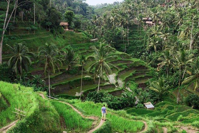 Private Bali Instagram tours