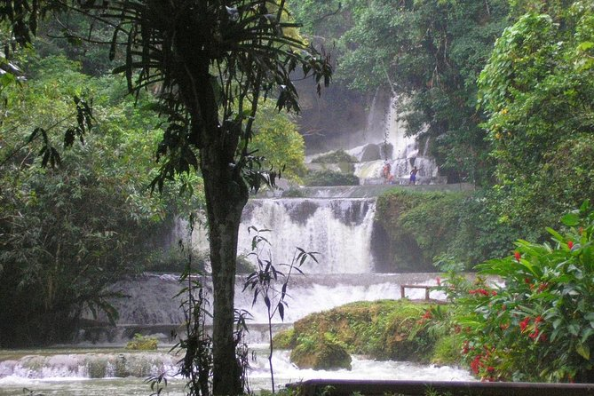 YS Falls and Sightseeing Tour Day Adventure