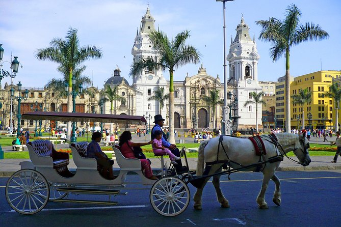 Lima City Tour. Pre-Hispanic, Colonial and Modern Tour.