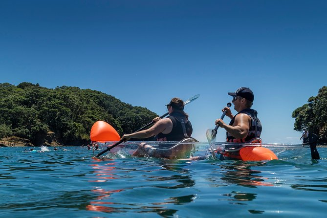 Clearyak hire at Goat Island Marine Reserve