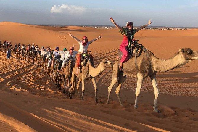 Fez To Fez Desert Tour 1 Night /2 Days