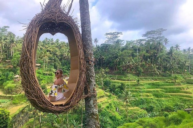 Ubud Day Tour with Private Car and Driver