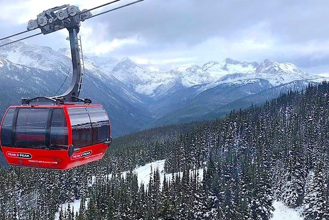 Whistler Sightseeing Tour from Vancouver: See Horseshoe Bay and Shannon Falls