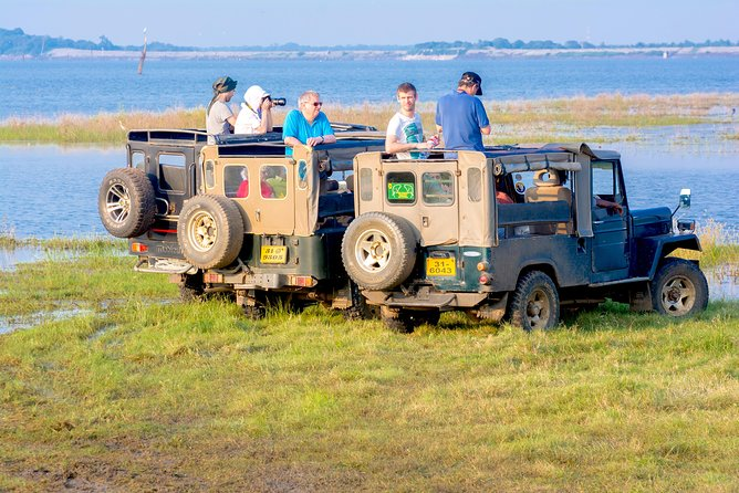 Jeep Safari at Minneriya National Park photo 2