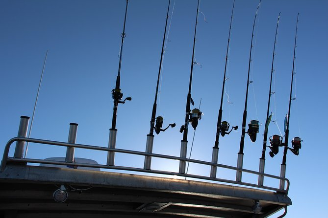 Full Day Bay Package - East Coast Tasmania Fishing Charter photo 7