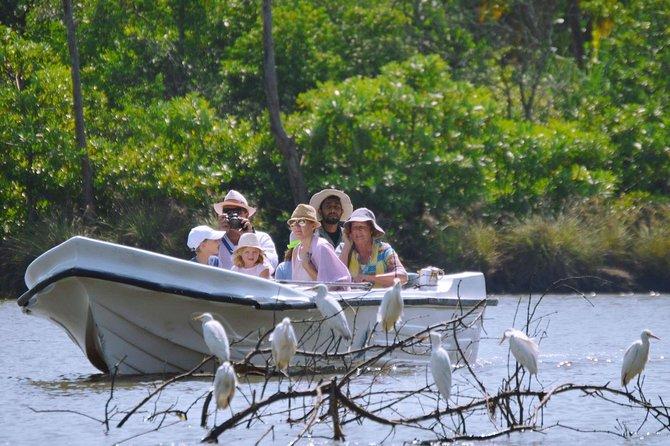 Muthurajawela Bird Watching Boat Tour