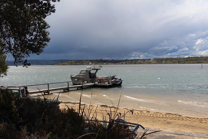Full Day Bay Package - East Coast Tasmania Fishing Charter photo 2