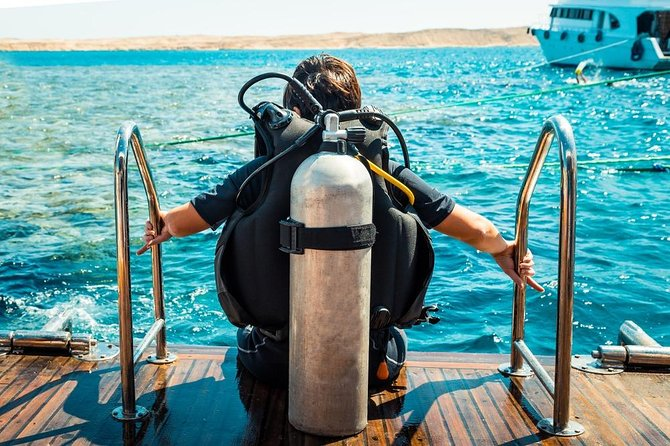 Full-day Diving Trip in Red Sea's Underwater from Hurghada