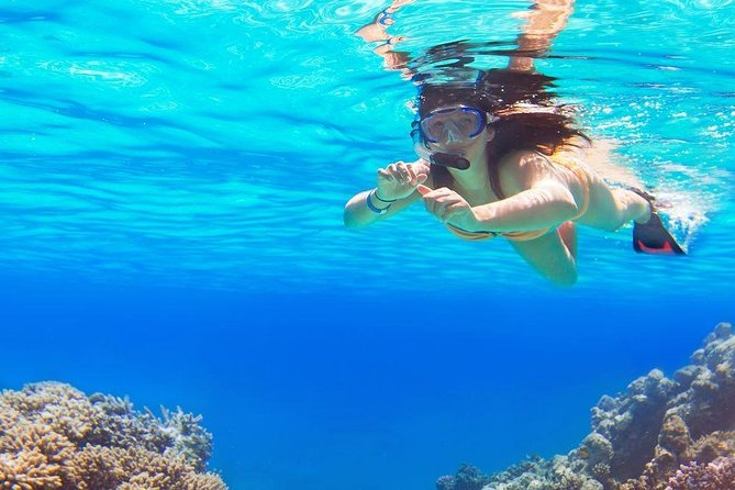 Half-Day Private Snorkelling Adventure on Sharm El Luli Beach