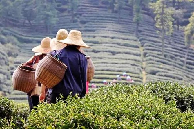 Hangzhou Private Day Tour from Nanjing by Bullet Train with Drop-off Option