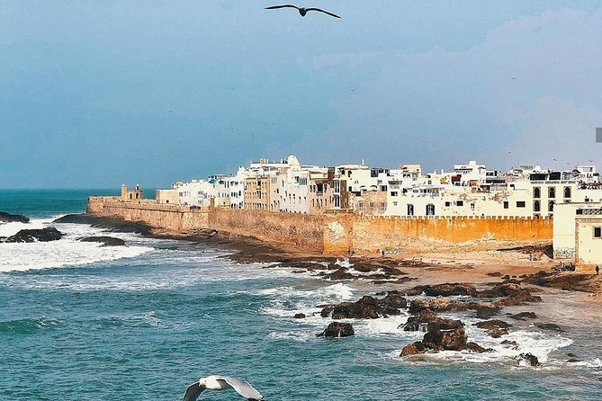 From Marrakech: day trip to Essaouira