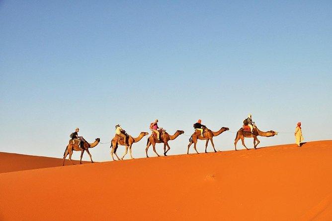 2 days in Sahara Zagora