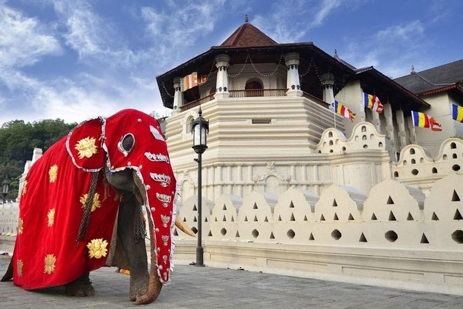 Kandy City Tours - Temple of tooth | View Point | 3 Temple Tour photo 1