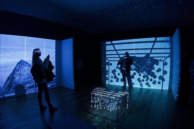 Tate Modern Art Gallery London Private Tour!