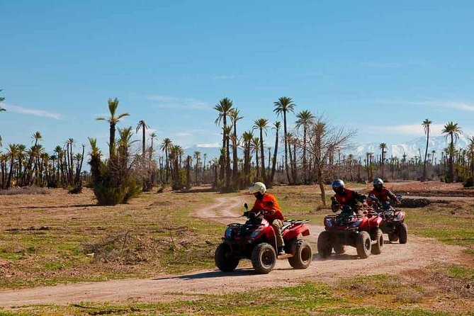 QUAD BIKE Small Group 1/2 Day in Marrakech photo 3