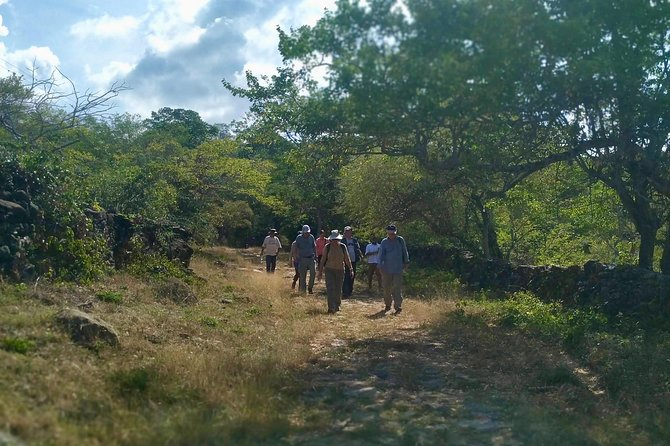 Eco Hike: The Royal Road from Jordan to Los Santos