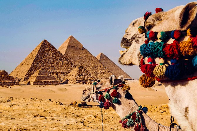 8 Days 7 Nights Pyramids and Nile Cruise by Air from Cairo Including Tours