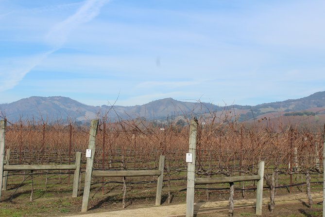 Sonoma County Wine Tasting Tour photo 11