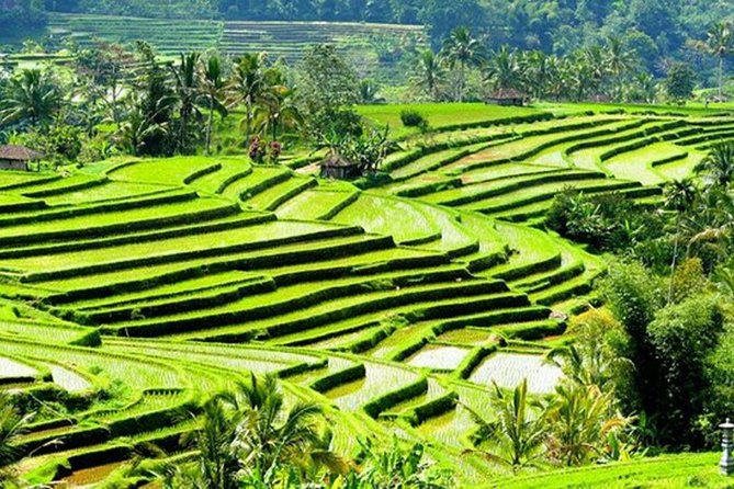 Bali Honeymoon Package 6 Days 5 Nights photo 15