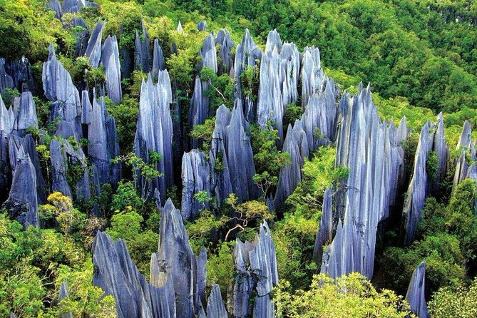 3-Day Private Relaxing Tour of Kunming including Stone Forest photo 1