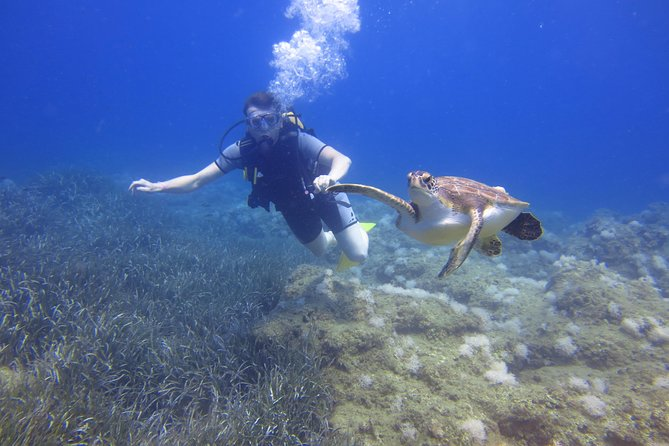 Alanya: Scuba diving experience for beginners photo 6